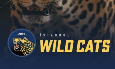 hwa gaming, istanbul wild cats, espor, vfşl